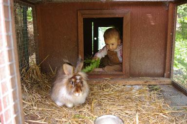 Sungiva feeds her rabbit, Janet.