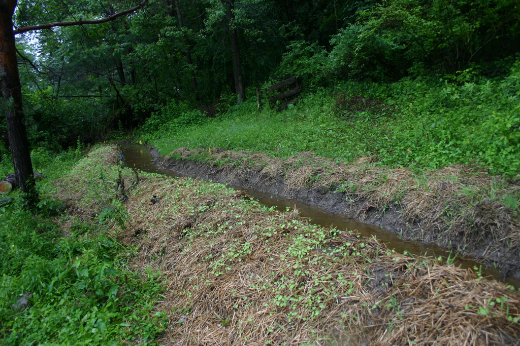 Living In Dryden Digging