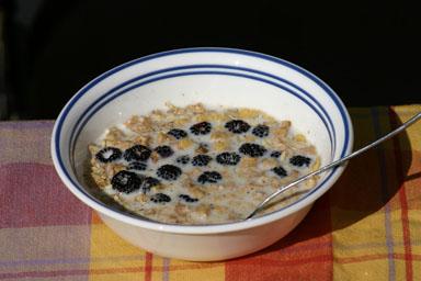 Black raspberries in cereal.