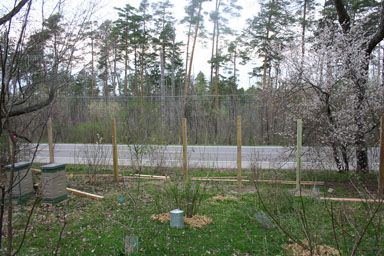 Posts planted.
