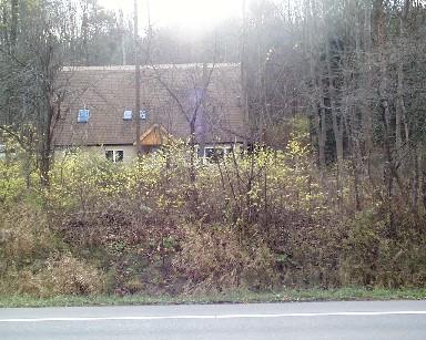 1251 Dryden Road